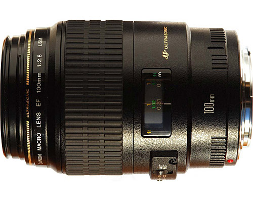 Canon EF 100mm f 2.8 pic